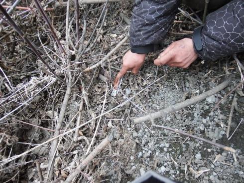 На Урале бездомный признался в убийстве собутыльника из ревности