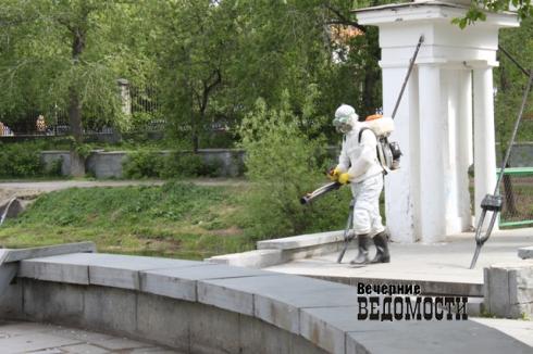 Клещевой сезон на Урале открыт: десятки человек стали жертвами кровососов